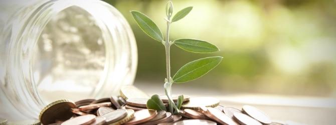 Im Schuldenbereinigungsverfahren kommen viele Schuldner finanziell wieder auf einen grünen Zweig.